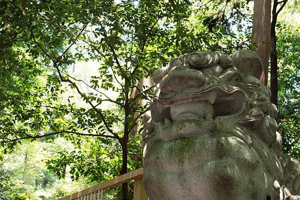 椿大神社狛犬