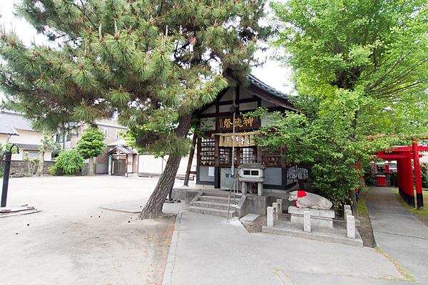 中村天神社拝殿と松の木