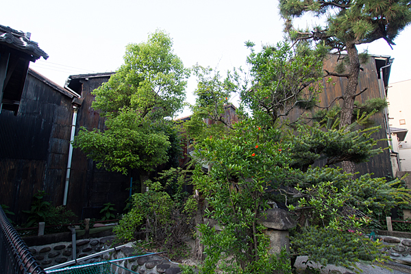 太閤厳島社神社の杜