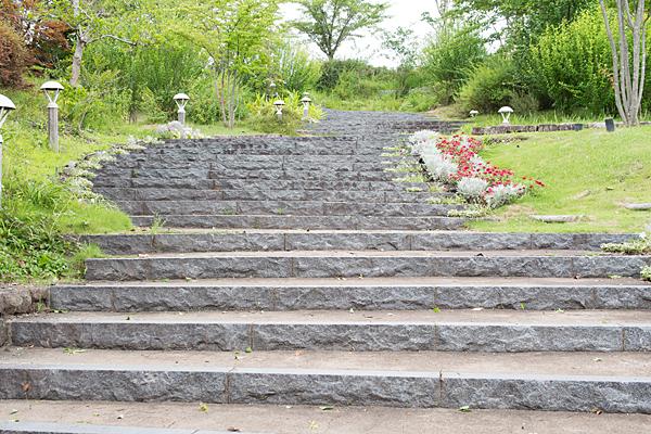 モリコロ歌壇と階段