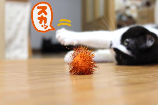 猫がイライラするとき。