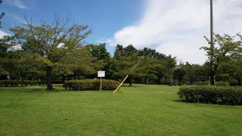 何も催し物のない平成の森公園はとっても静か(笑)。
