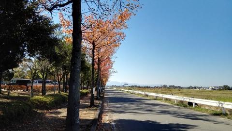 平成の森公園@埼玉県川島町