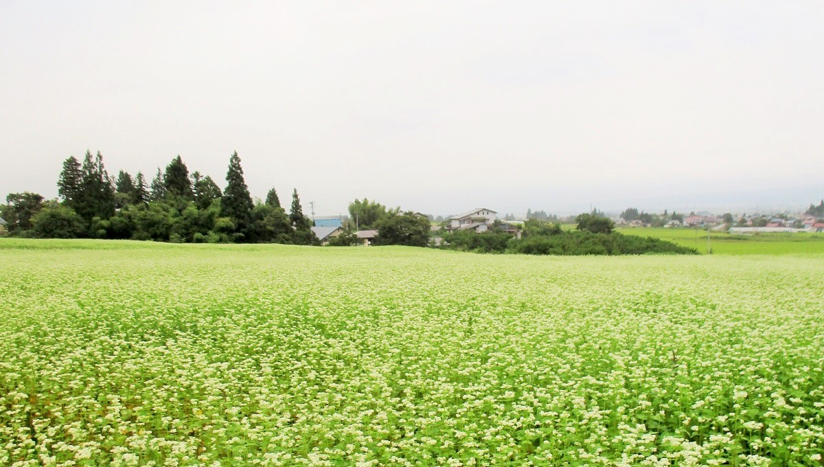 170907会津美里1