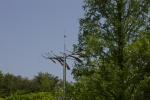 IMGP6326.jpg