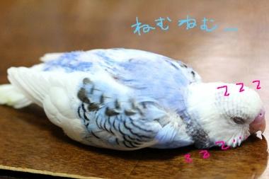 7_17_01.jpg