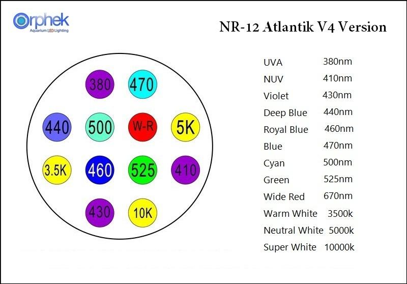 NR12_V4.jpg