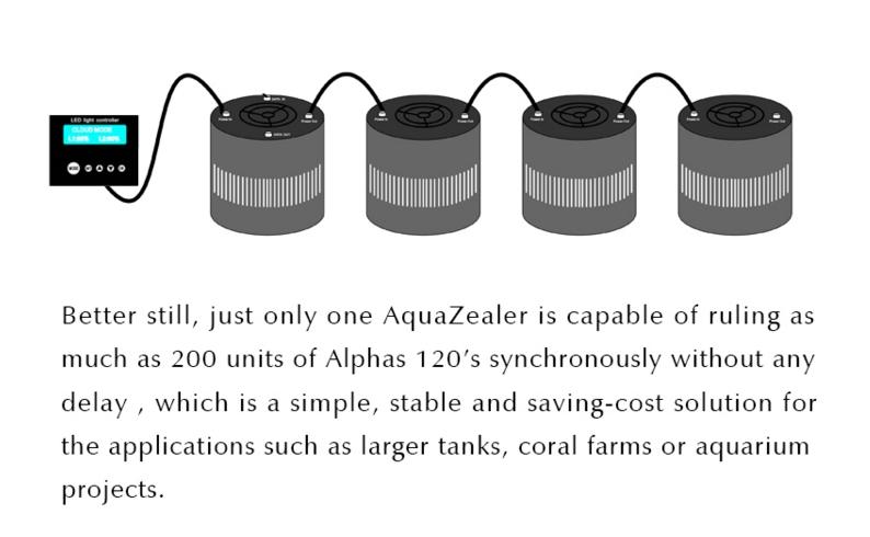 alpha001.jpg