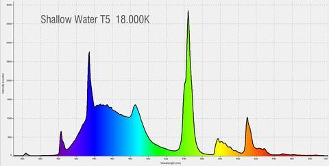 shallowwater_spectrum_1_large.jpg