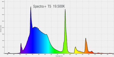 spectraplus_spectrum_1_large.jpg