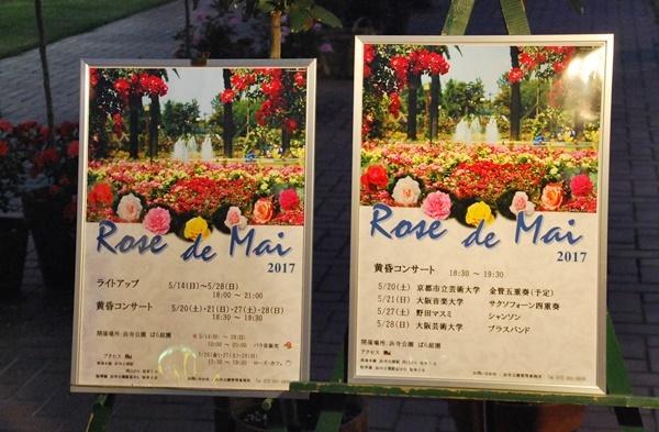 Rose de Mai案内