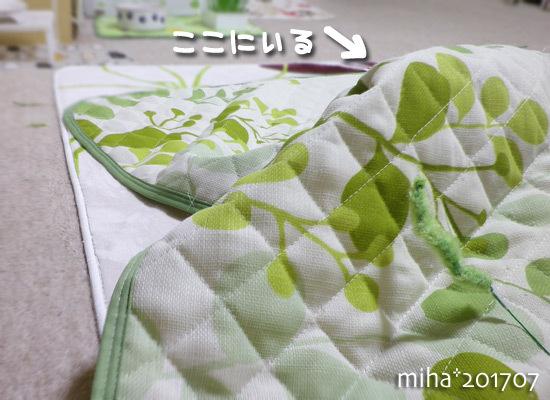 miha17-07-160.jpg
