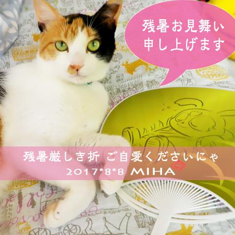 miha17-08-z2x.jpg