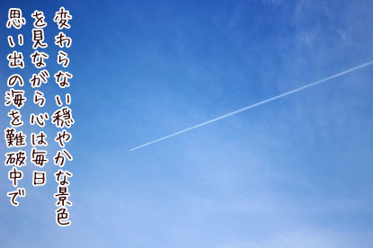 s-17091695 copy