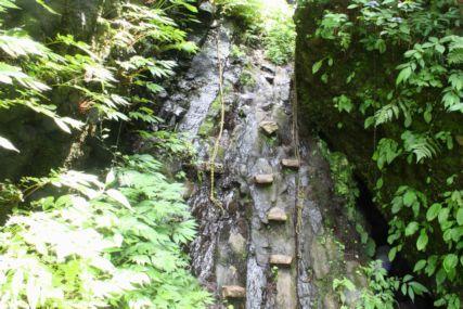 シワガラの滝道中4