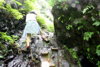 シワガラの滝道中5
