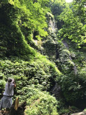 シワガラの滝道中6