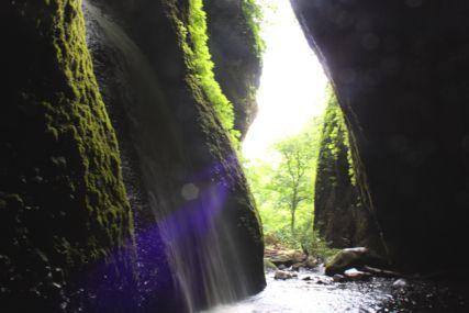 シワガラの滝5