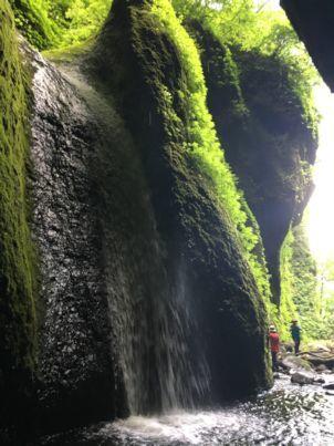シワガラの滝7