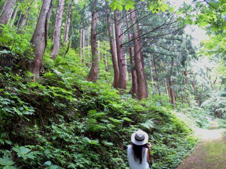 吉滝への道