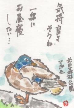 前田森林公園 (4)