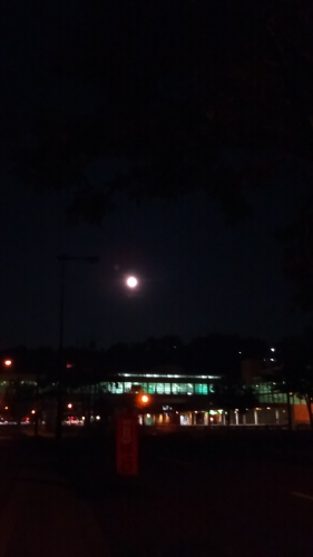 KIMG13478月の月