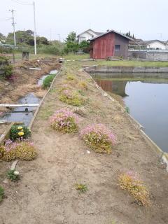 花刈り after