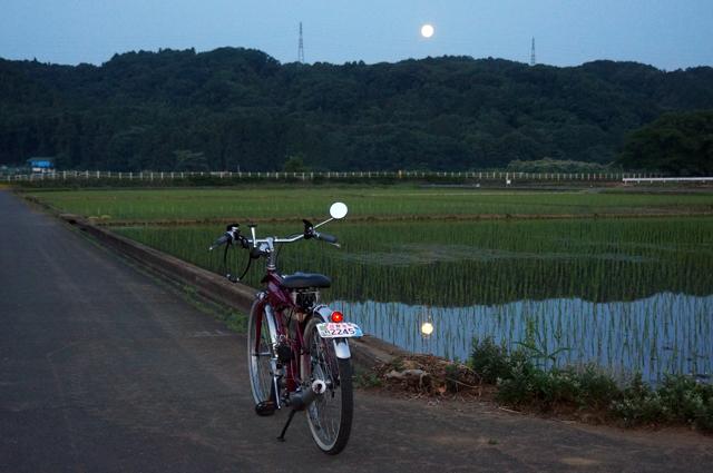 月夜と田んぼとモペットと