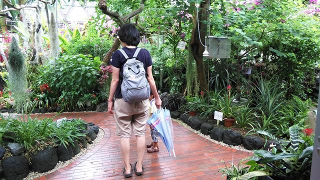 鞍ヶ池公園の植物園