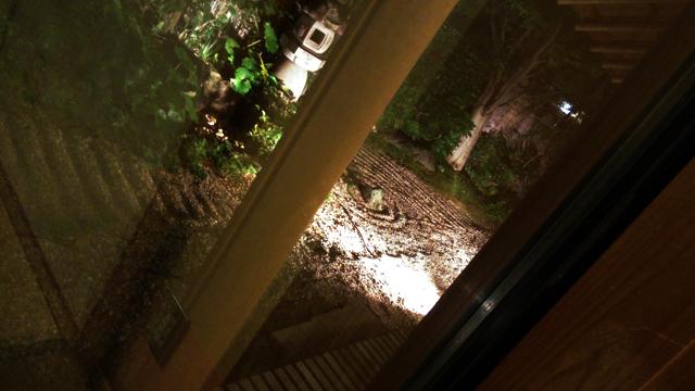 うさぎ屋銀静さんの個室から見えるお庭