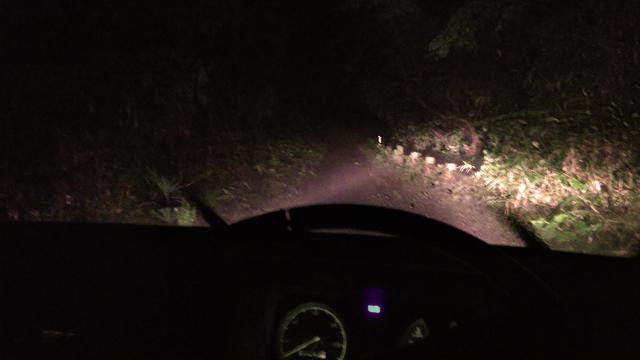 薄く霧の出る尾根道を行く
