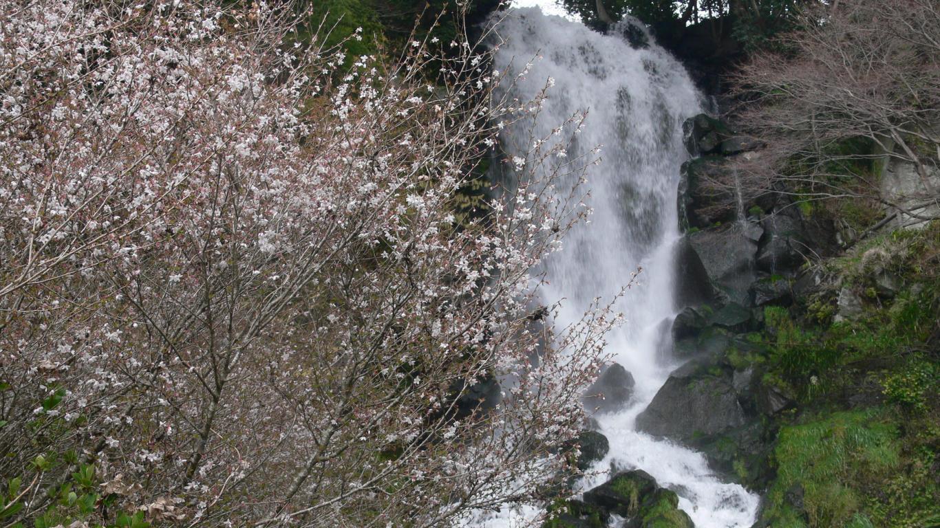 090331朝日滝002