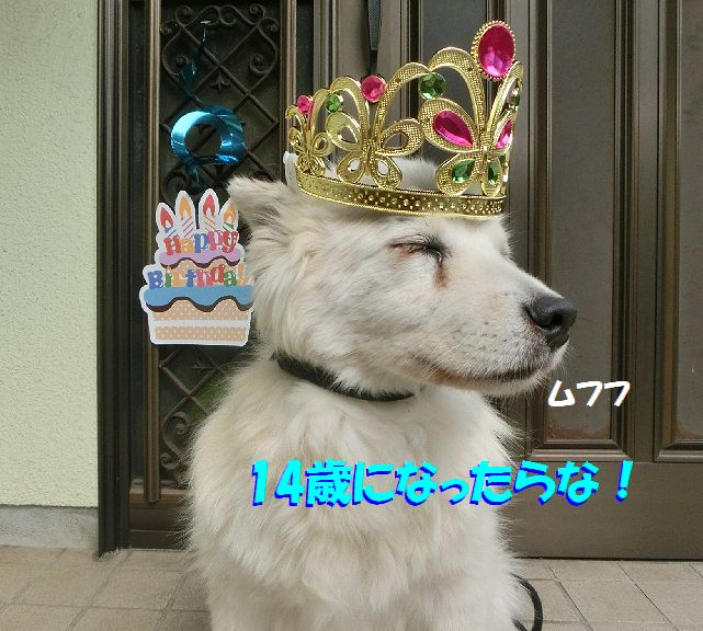 e_20170612000020e1d.jpg