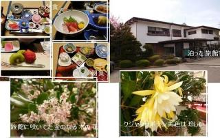 0503yamagatar1.jpg