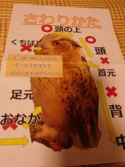 0811ifukurou11.jpg
