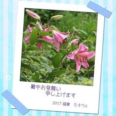 2017たえりんちゃん