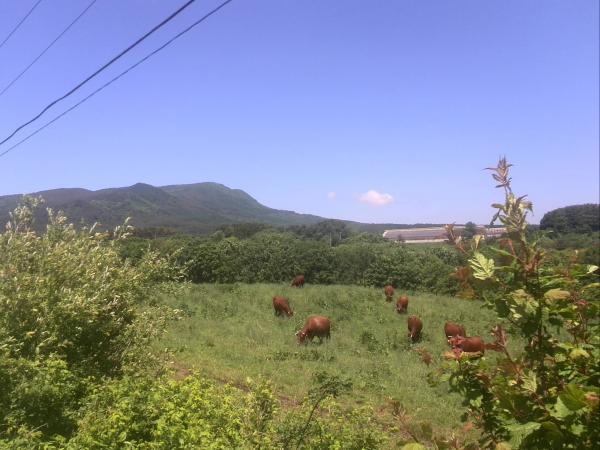 久慈平岳で①