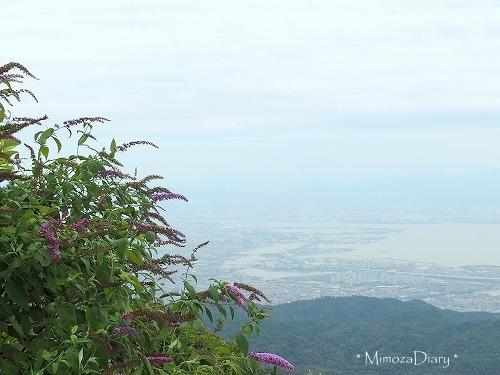 六甲山ガーデン