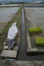 石井町の水入れ21