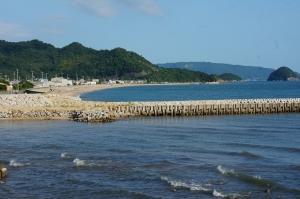 台風の後の朝1