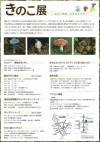 2017筑波実験植物園きのこ展2
