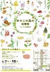 2017きのこの森の収穫祭1