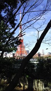 20161224芝浦から増上寺、新橋(その14)