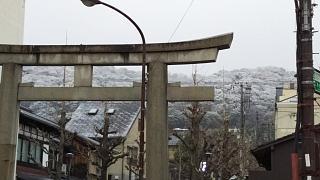 20161218清水周辺(その4)