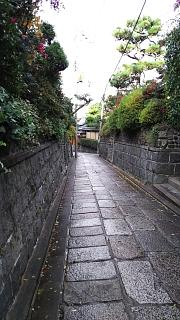 20161228三年坂~石塀小路(その13)