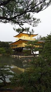20161228金閣寺(その31)