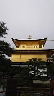 20161228金閣寺(その32)
