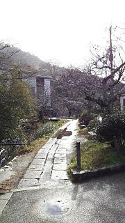 20161228銀閣寺道(その1)