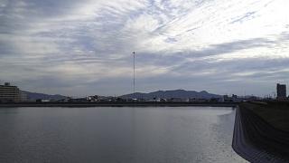 20160529野田池(その4)
