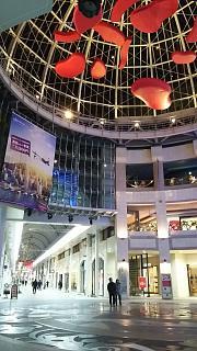 20161229商店街(その4)